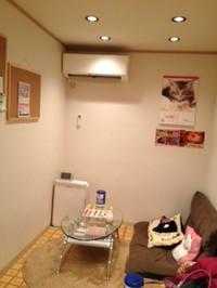 Catroom_3